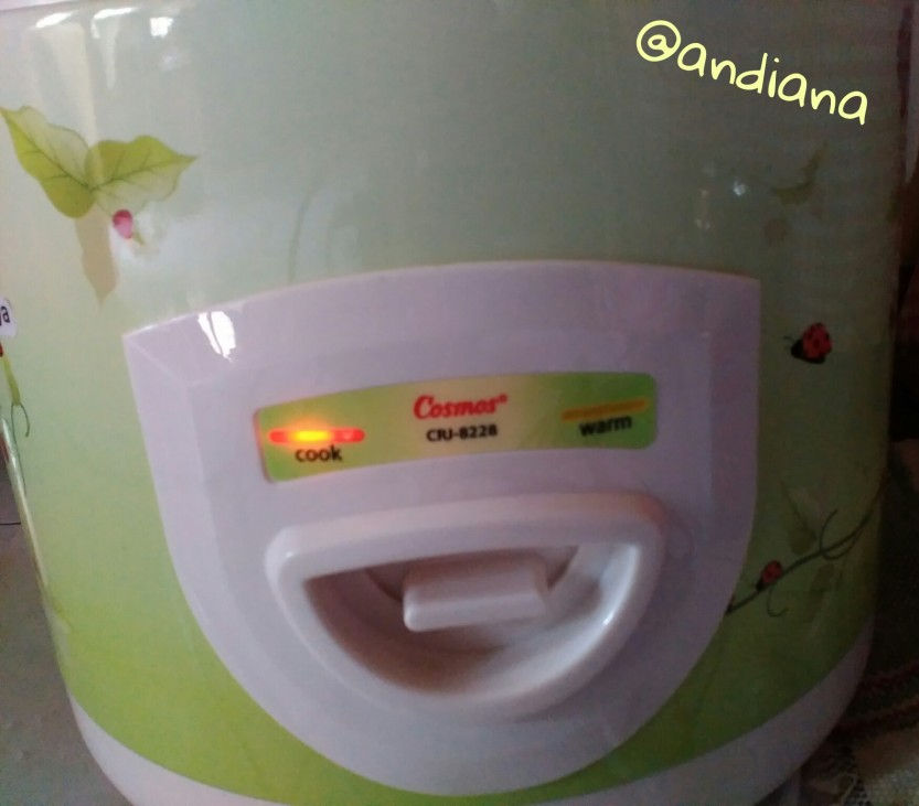 Cosmos rice cooker